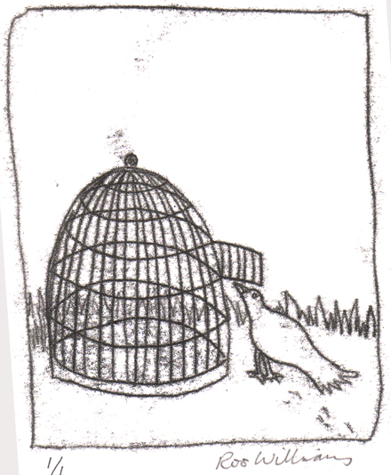 Bird looking inside a cage