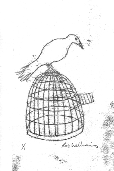 Bird on a cage